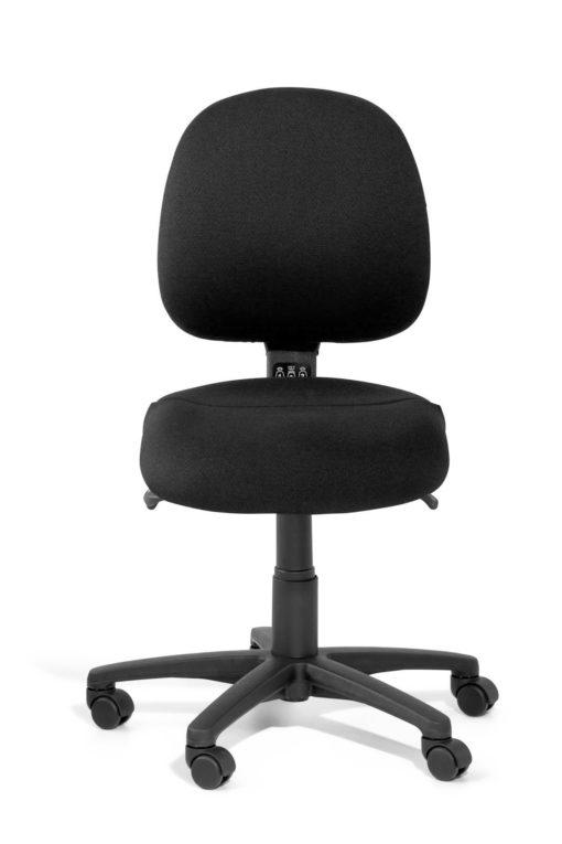 Gregory Inca Medium Back Ergonomic Chair