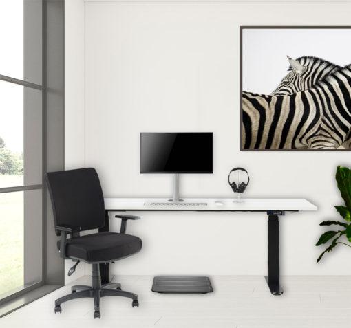 Timotion desk - scorpio home chair - adaptive single monitor mount